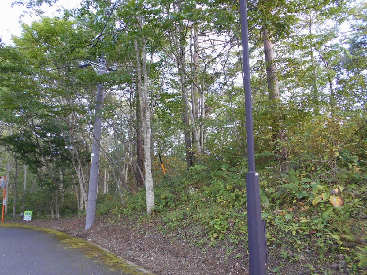 ブランシャールの森 区画21.22 離山を望む - 9