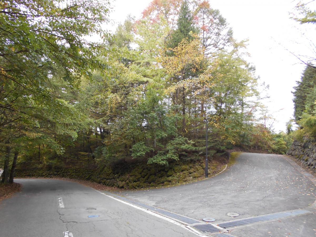 ブランシャールの森Ⅰ期 区画2 - 0