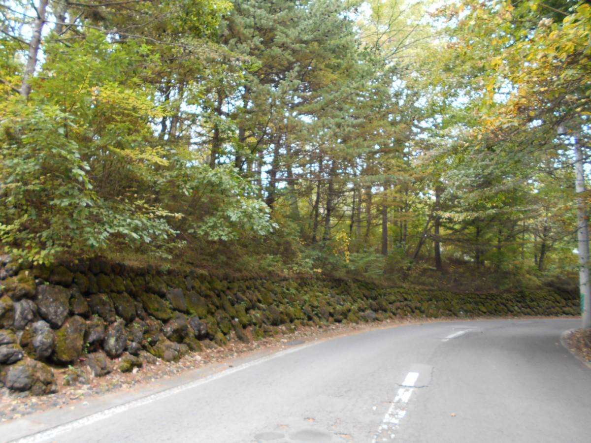 ブランシャールの森Ⅰ期 区画2 - 3