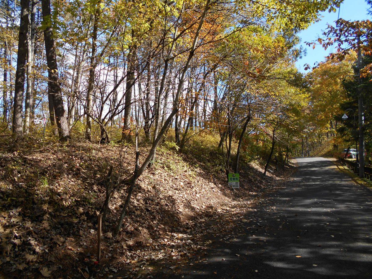 ブランシャールの森 区画8