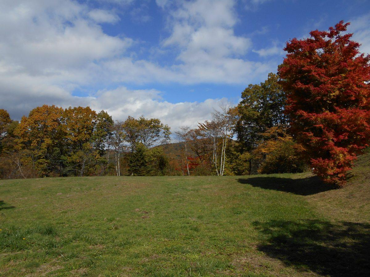 ブランシャールの森 区画2