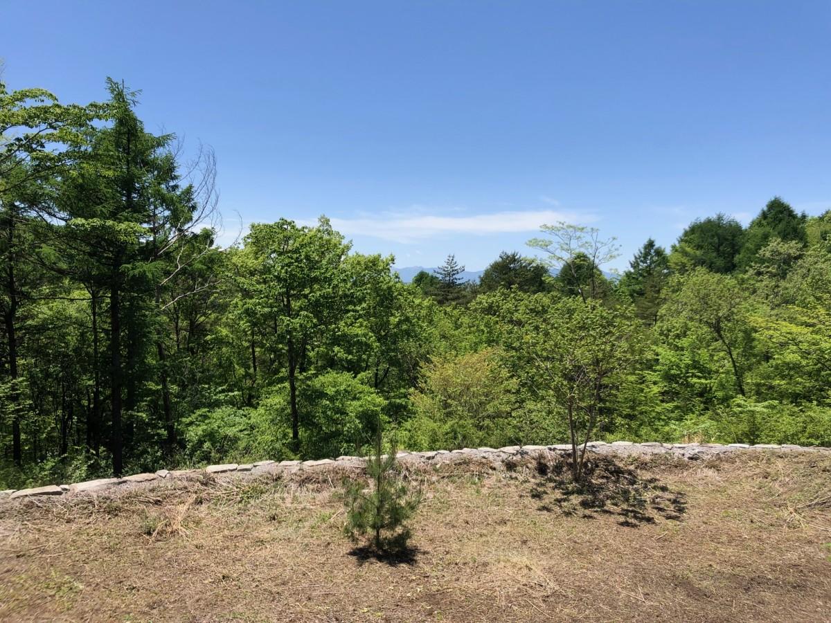ブランシャールの森 区画29.30 - 5