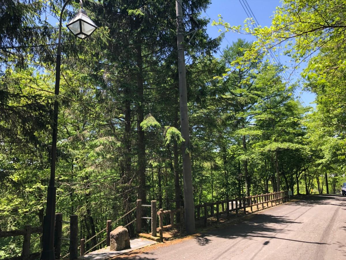 ブランシャールの森 区画28 - 7