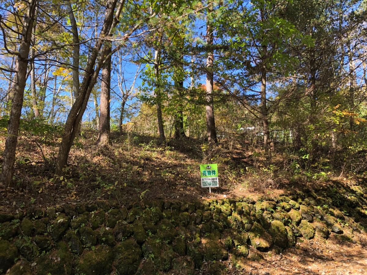 ブランシャールの森Ⅰ期 区画2 - 1