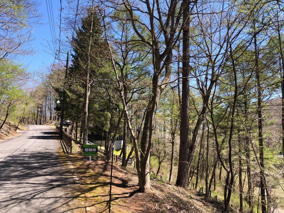 ブランシャールの森 区画28
