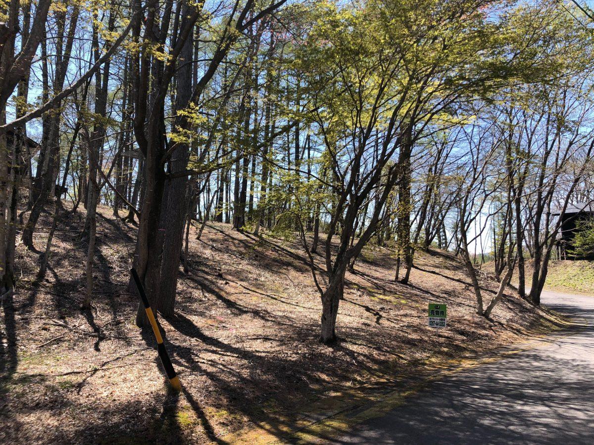 ブランシャールの森 区画7