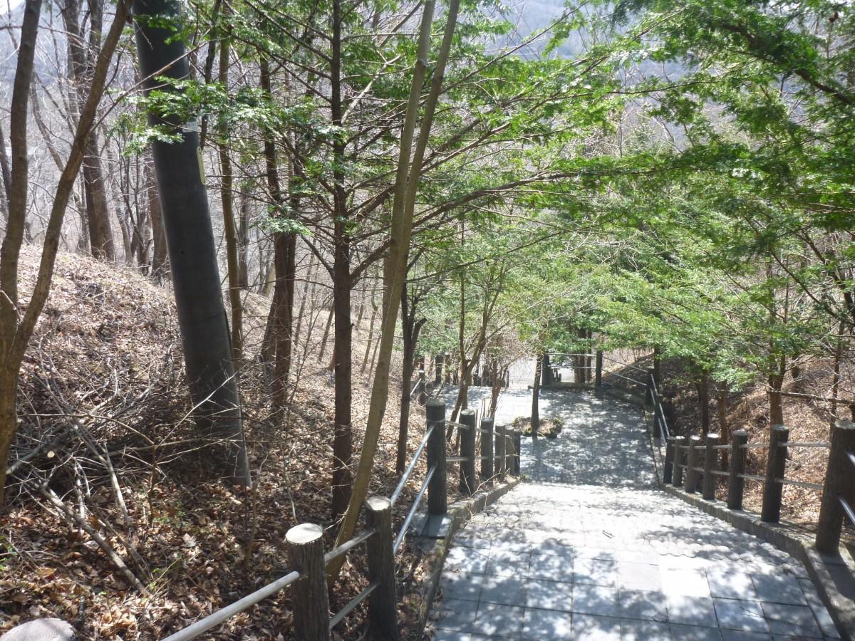 ブランシャールの森1期  区画11.12.13 - 11